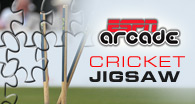 Cricket Jigsaw